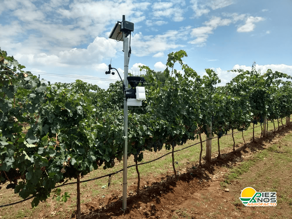 sistema de monitoreo en viñedos