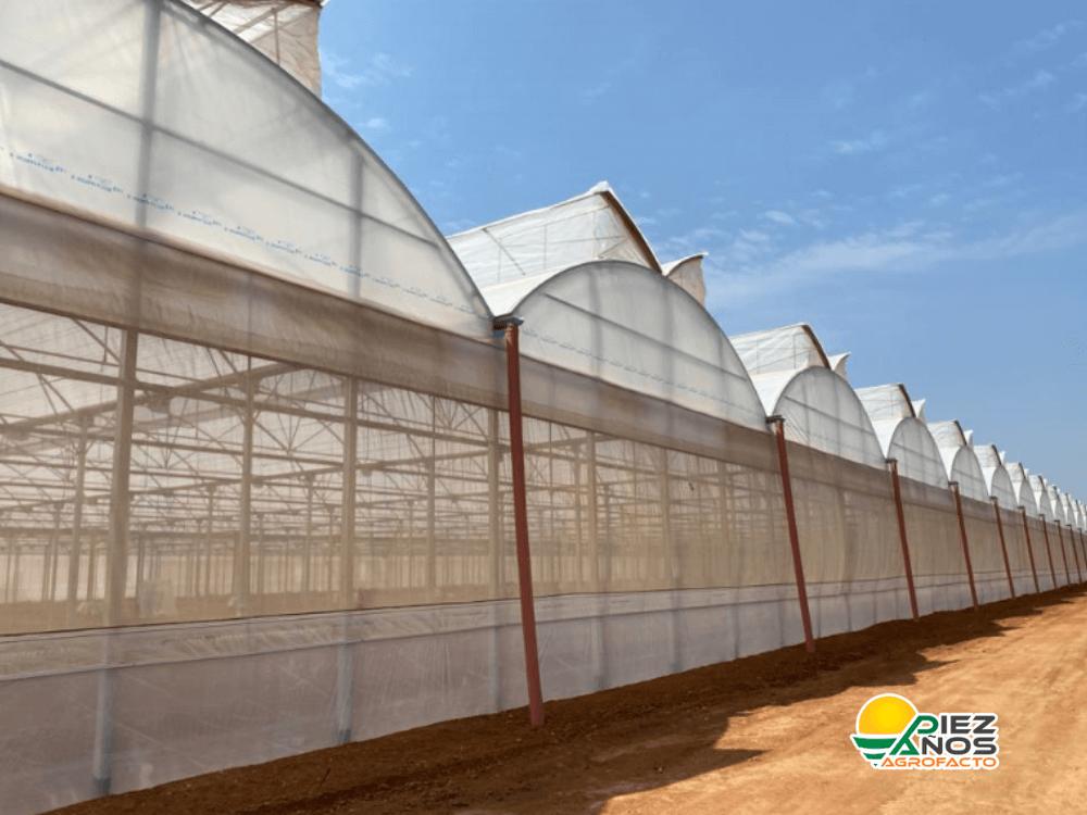 construcción de invernadero multitunel