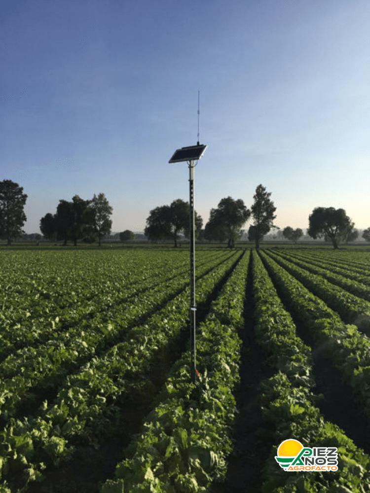 sistema de monitoreo agrícola en campo abierto